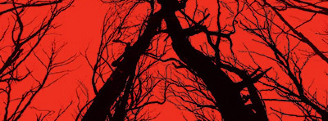 ведьма из блэр: новая глава